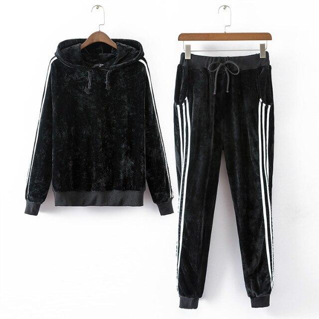 Anspretty Apparel 2016 Autumn Two Piece Set Active Suit Women Velvet Hoodie Pants Female Tracksuit Sweatsuit