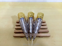 5ML 20pcs 50pcs Carrot Shape Empty Lip Gloss Tube DIY Plastic Clear Liquid Lipstick Container Women