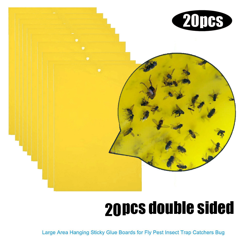 20Pcs Strong Flies Traps Bugs Sticky Board Catching Aphid Insects Pest Killer convenient and  practical Household HOT Sale-in Baits & Lures from Home & Garden