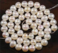 "Free shipping! Wholesale AAA 8-9mm White Freshwater Cultured Pearl Loose Bead 14""     JT6714"