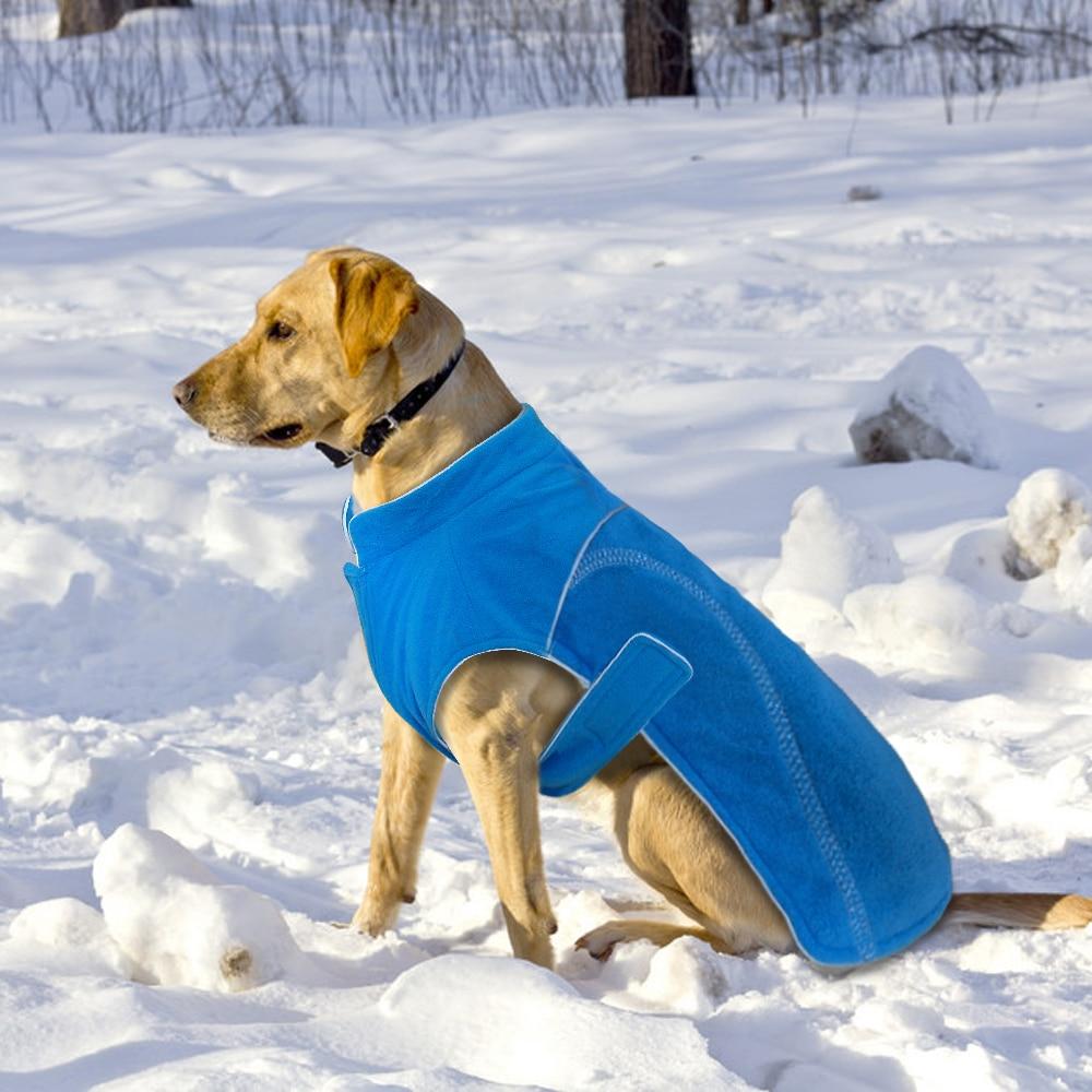 Winter Dog Fleece 1