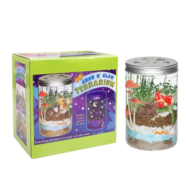 for Kids DIY Grow 'n Glow Terrarium - Science Kit for Kids , Creative Gift Toys , Year-Round Fun Educational Science Activities