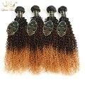Ombre Бразильский Вьющиеся Волосы Девственницы 4 Связки 8А Необработанные Virgin Вьющиеся Волосы Пучки Бразильский Плетение Волос Пучки Человеческих Волос