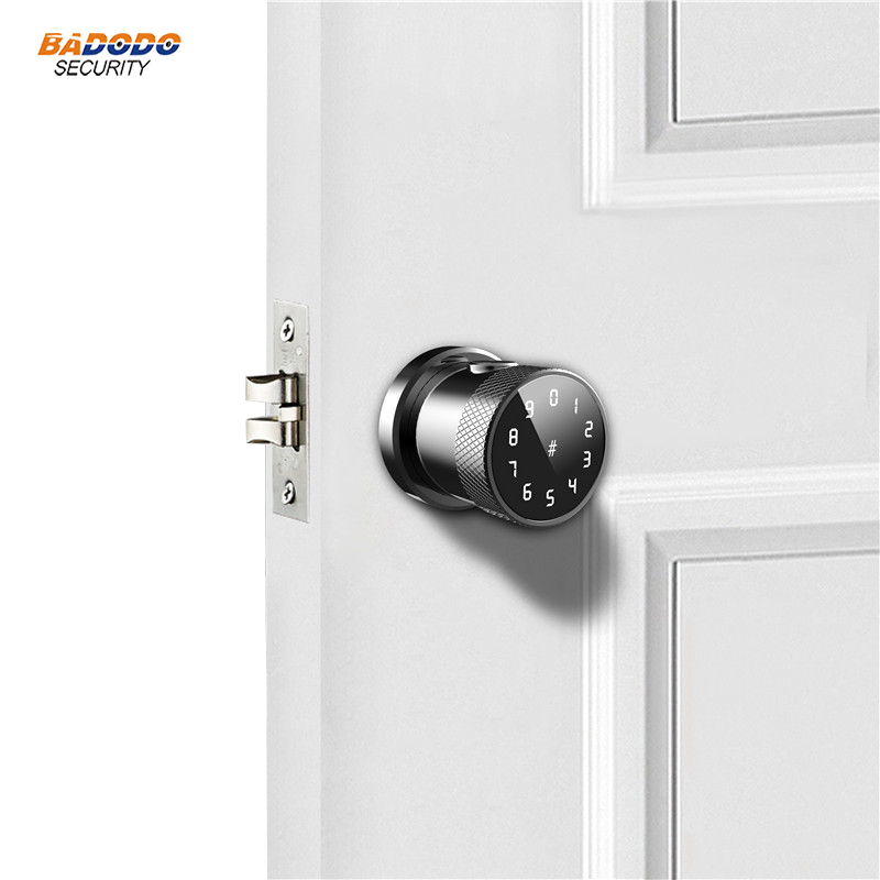 smart password IC card APP remote control door lock fingerprint lock optional for wooden door access