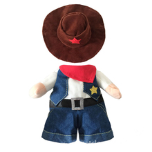 Funny Costume a Cowboy for Cat