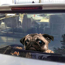 Funny 3D Pug Dogs Watch Car Window Decal Cute Pet Puppy Sticker Dropshiping(China)