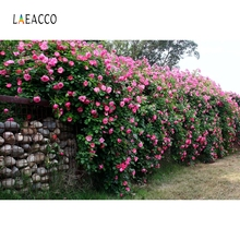 Laeacco Brick Wall Flowers Scene Green Vine Baby Portrait Photographic Backgrounds Photography Backdrops For Photo Studio