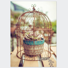 лучшая цена European net cage wrought iron vintage bird cage can cover the bird cage of the plant retro style home decoration accessories