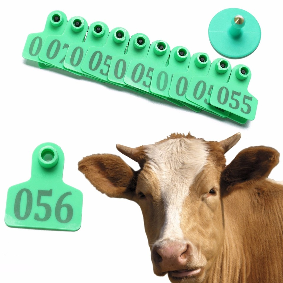M.Z.A Etiquetas de Oreja de una Pieza para ovejas de Cabra Etiquetas de Oreja de Ganado de pl/ástico Etiquetas de Oreja de Animales en Blanco Alicates de punz/ón Universal Without Number