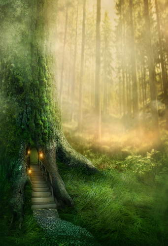 Magic tree house photography backdrops forest photo background for kids photo studio photography background camera fotografica