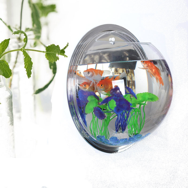 28cm fish tank acrylic aquarium wall hanging flowers pot for Vase aquarium rond