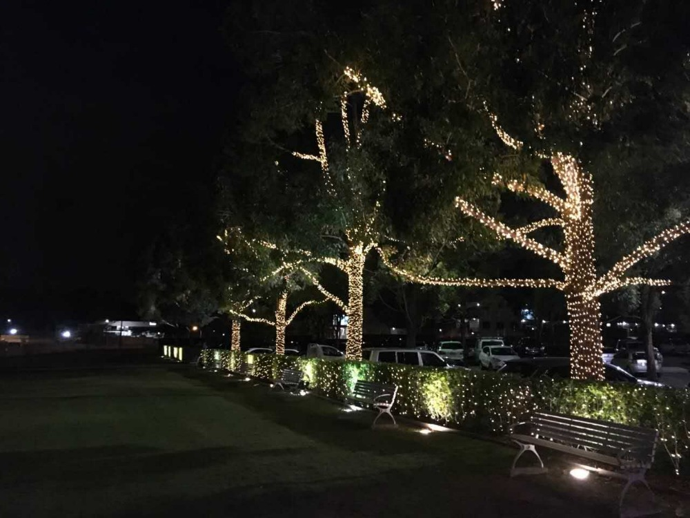 100m 600led waterproof outdoor party lights christmas holiday wedding tree wrap decoration twinkle string light 220v eu 4 color in lighting strings from