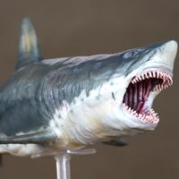 PNSO Ancient Marine Llife Megalodon Movie The Meg archetype 32cm 1:35