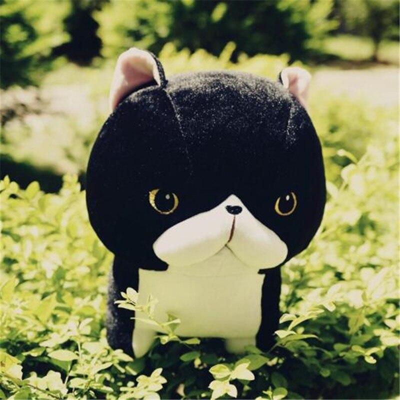 Doub K 5 pcs/lot kawaii chat en peluche jouet 30 cm 40 cm doux peluche poupées Simulation animaux en peluche jouets enfants oreiller cadeau créatif - 6