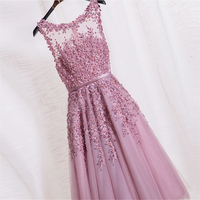 Bride Prom Formal Dress Soiree Pink Lace Short Embroidery with Beaded Perspective Backless Fashion Party DR342