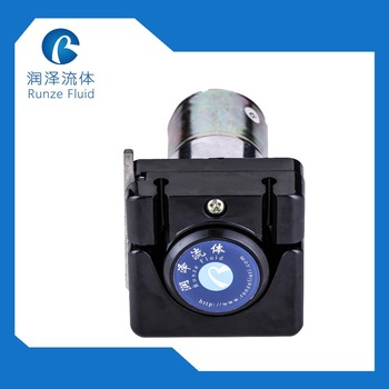 RUNZE RZ1030 DC Motor 12v Mini Peristaltic Pump Easy Load Tubing Replaceable