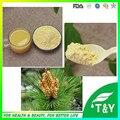 Venta caliente natural 100% pure polen de pino polvo polen pini