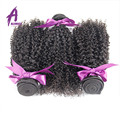 Alimice 7A Unprocessed Natural Brazilian Kinky Curly Virgin Hair Products 3-4Pcs Afro Kinky Human Hair Extension Weave Bundles