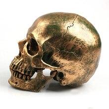 Bronze Human Skull Resin Craft Home Decor Imitation Skull