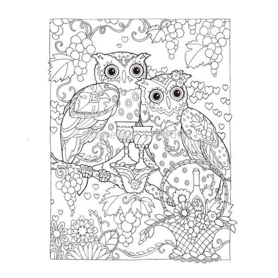Creative Haven Coloring Book OWLS Books For Children Adult Secret Garden Series Kill Time Painting Drawing In From Office