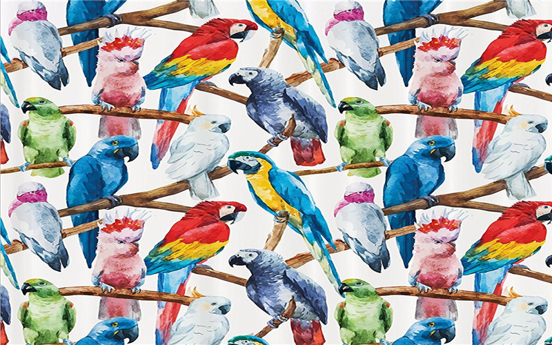 Parrot Style Bathroom Mat,Funny Anti Skid Bath Mat,Shower Curtains Accessories,Matching Your Shower Curtain