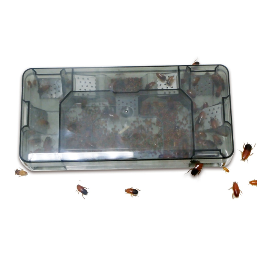 Image 3 - 2pcs Reusable Effective Cockroach Trap Box Reusable Cockroach Roach Catcher Cockroach Killer Bait Traps Pesticide for Kitchen-in Traps from Home & Garden