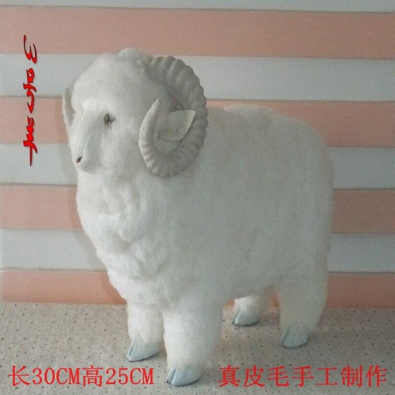 artificial animal about 30x25 cm cute white goat toy fur&polyethylene sheep model toy home ornament,Christmas gift g9541 bwl 01 tyrannosaurus dinosaur skeleton model excavation archaeology toy kit white