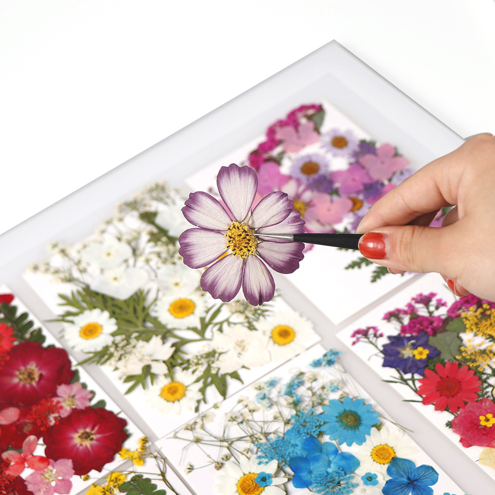1 Bag Of Dried Flowers UV Resin Decorative Natural Flower Stickers 3D Dry Beauty  Decal Epoxy Mold DIY Filling Jewelry