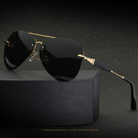 Famous Polarized Sunglasses