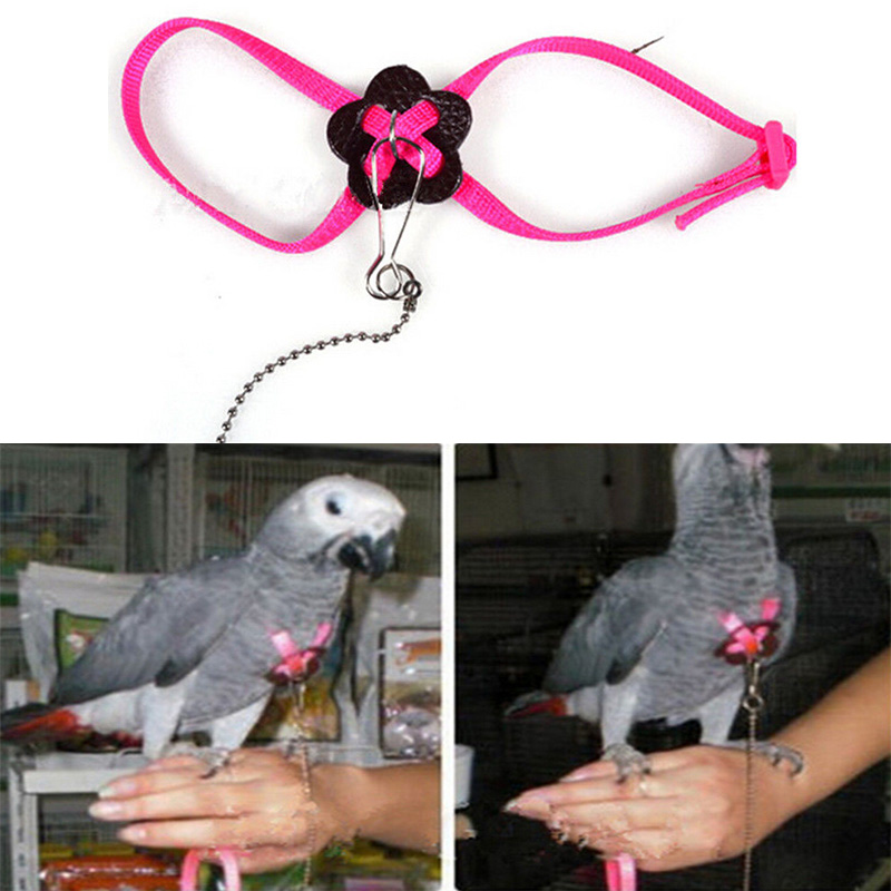 Parrot Bird Harness & Leash Adjustable Multicolor Light Soft Fashion