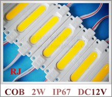 injection COB LED module waterproof LED back light backlight LED COB module for sign DC12V 2W IP67 CE ROHS 70mm*20mm*3mm ABS(China)