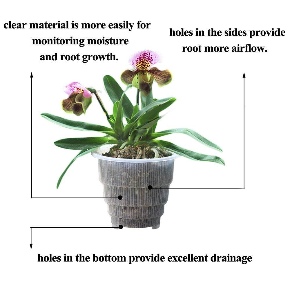 Ganz und zu Extrem Meshpot 4 5 6 Zoll Kunststoff Klar Orchidee Topf Mit Löcher, blume #XA_46