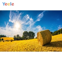Yeele landscape Blue Sky Cloud Gold Wheat Stubble Photography Backdrops Personalized Photographic Backgrounds For Photo Studio цена
