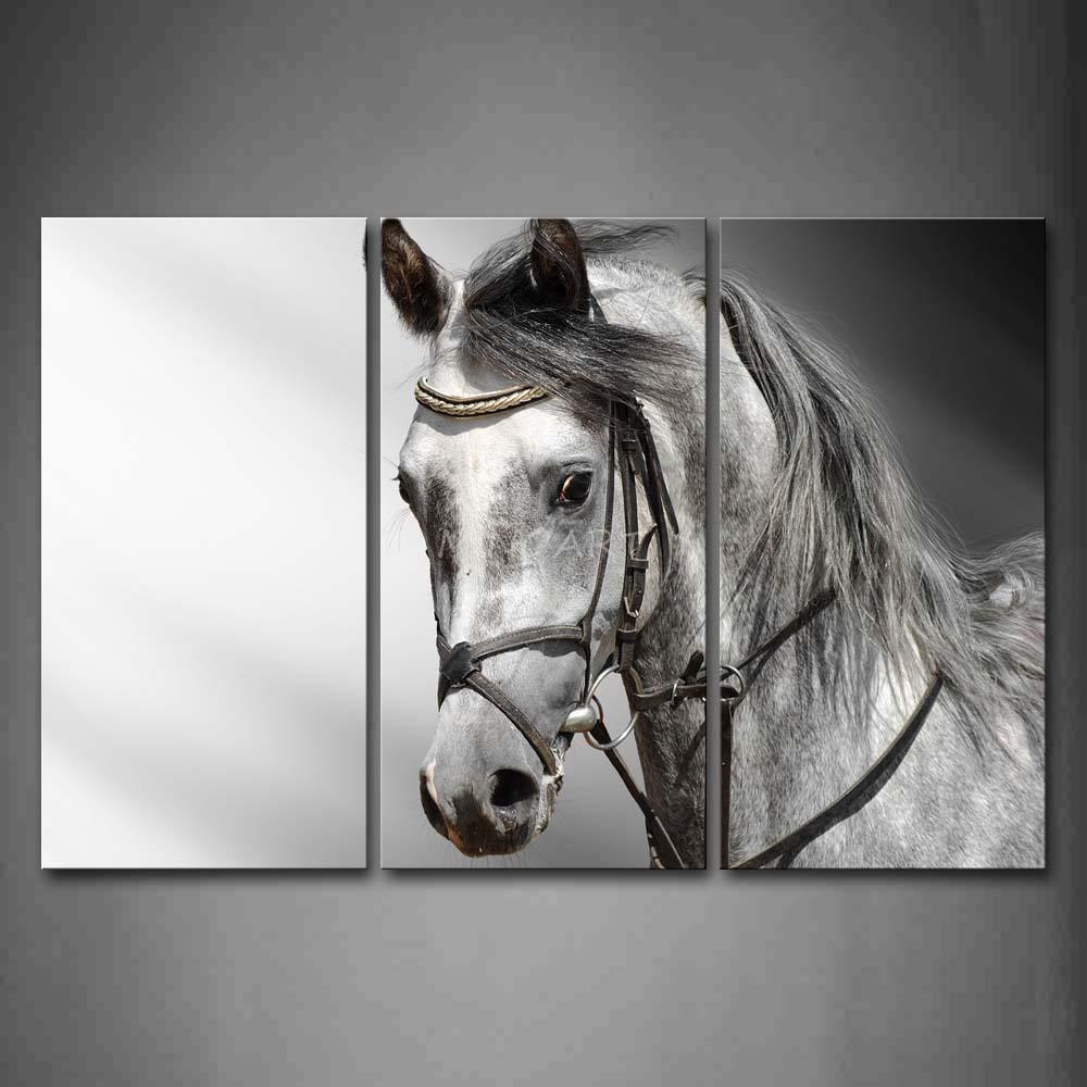 3 Piece Black And White Wall Art Painting Gray Horse Head Portrait Picture Print On Canvas Animal 4 The In Calligraphy From Home Garden