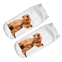 New 3D Cute A Dog Enjoying Music Printed Socks