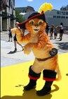 mascot Puss cat masc...