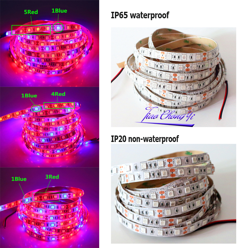 0.5 -5M Waterproof 5050 Grow LED Flexible Strip Tape Light 3 / 4 / 5 Red 1 Blue