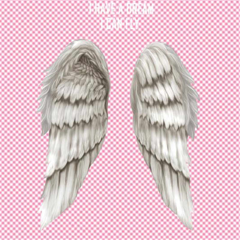 T shirt women Diy pvc patch angel wings biker patches for clothing heat transfer printing clothes for stickers free shipping