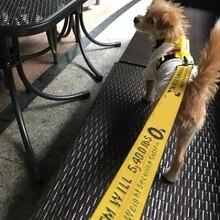 Dog Leash Nylon Rope 1.6M Fashion Dog Pet Leash Lead Puppy Medium Large Dogs Safety Protect Dog Supplies