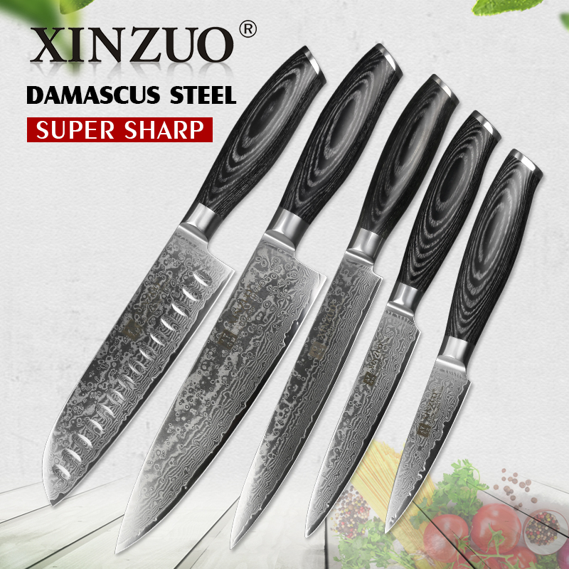 XINZUO 5Pcs Kitchen Knives Set 67 lapisan Jepun VG10 Damascus Steel Chef Cleaver Santoku Utiliti Paring Piska Pakka Wood Handle