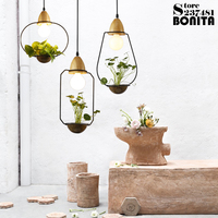 Potted Plants Led Pendant Lights Simple Rural Flower And Grass Cord Pendant Lamp Glass Plant Droplight Iron