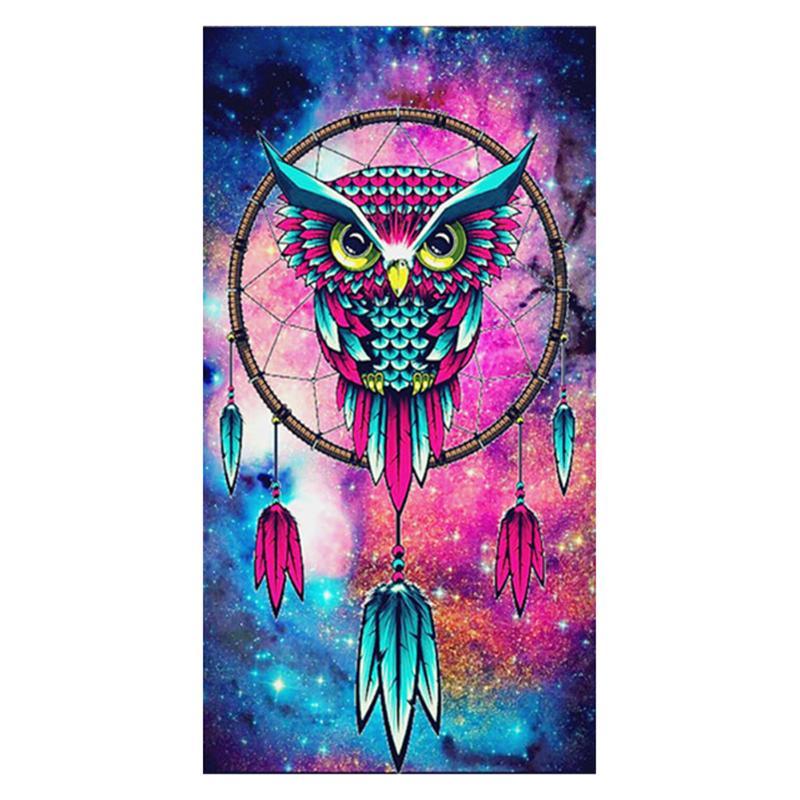 Diamond Owl Dream Catcher Painting