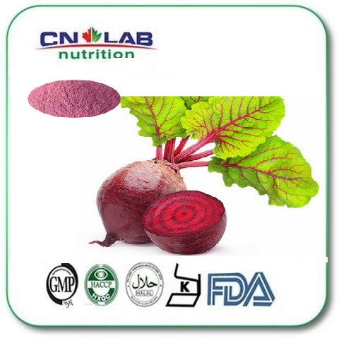 1000g Hot selling Beetroot / Sugar Beet / Beet Root Powder Extract powder with free shipping valerian root extract 500mg 50 capsules free shipping
