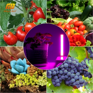 Image 5 - USB Full Spectrum Led Plant Grow Light 3W 5W 5V Fitolamp For Greenhouse Hydroponic Plant Garden Led Grow Lights Phyto Lamp
