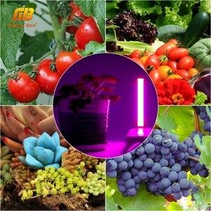 Image 5 - USB pełnozakresowe Led roślin oświetlenie do uprawy 3W 5W 5V Fitolamp dla hydroponiczna roślina szklarniowa ogród lampa Led do wzrostu oświetlenie do uprawy s lampa fito