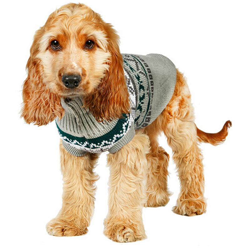 Small Dog Sweaters (8)