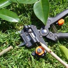 Садовые инструменты с фруктовым деревом секаторы для дерева