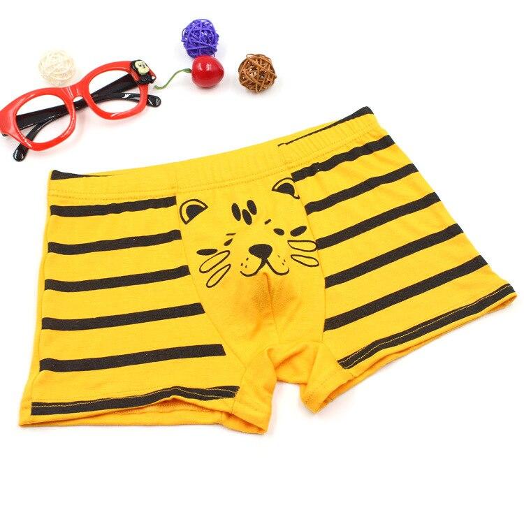 Popular Tiger Boys Underwear-Buy Cheap Tiger Boys Underwear lots ...