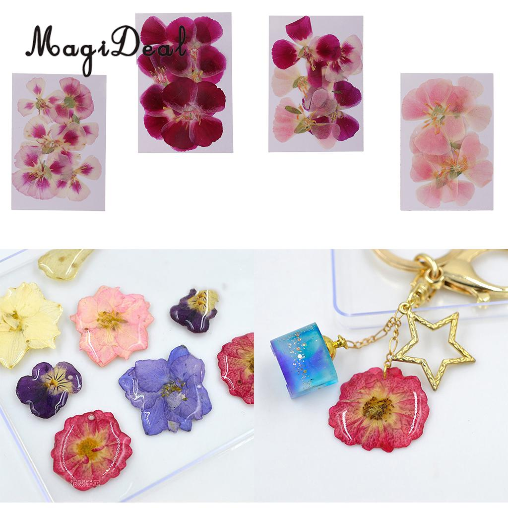 Art Crafts Fityle 12Pcs Pressed Press Dried Flower Real Dried Flower Plant Specimen Filler for Scrapbooking Card Making Epoxy Resin Jewelry Phone Case DIY