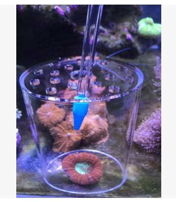 Image 3 - marine source Coral Feeding Protection Cover Coral Feeder Cove forMarine Aquarium Reef Tank-in Cleaning Tools from Home & Garden